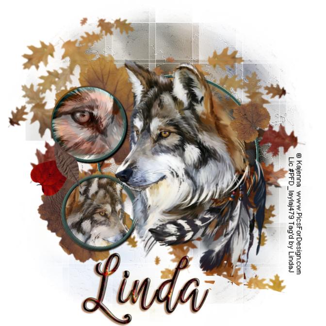 Linda_WolfLJ03252016